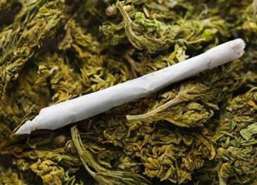 Utah Marijuana Rehab / Information